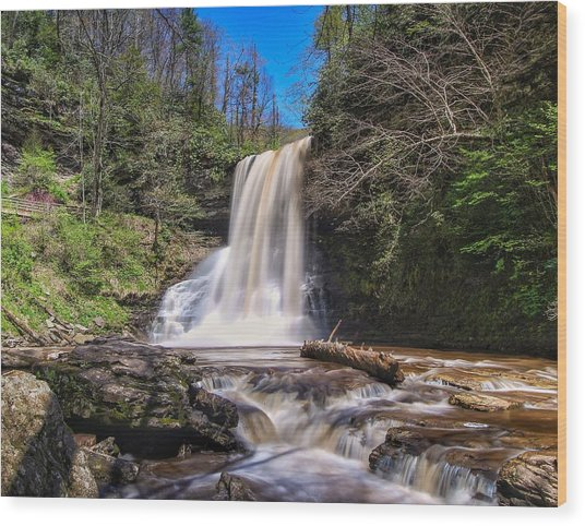 Cascade Falls In Spring Wood Print