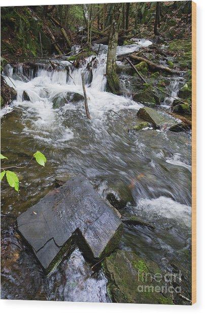 Cascade Falls Stream, Farmington, Maine  -30329 Wood Print