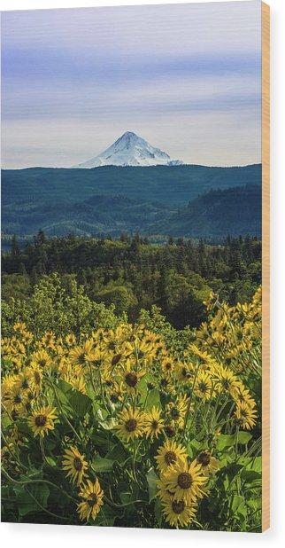 Cascade Spring Wood Print