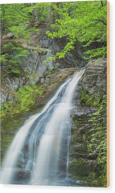Cascade Waterfalls In South Maine Wood Print
