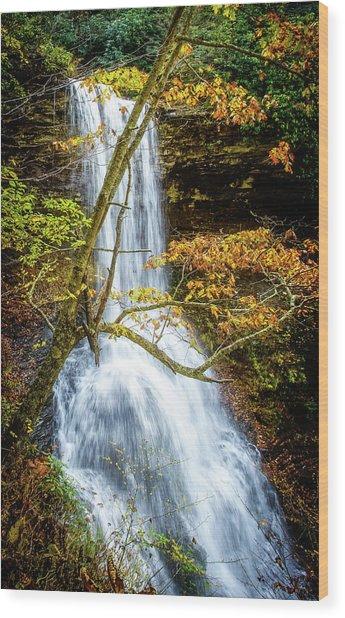 Cascades Deck View Wood Print