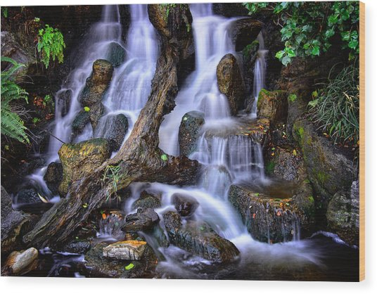 Wood Print featuring the photograph Cascades by Harry Spitz