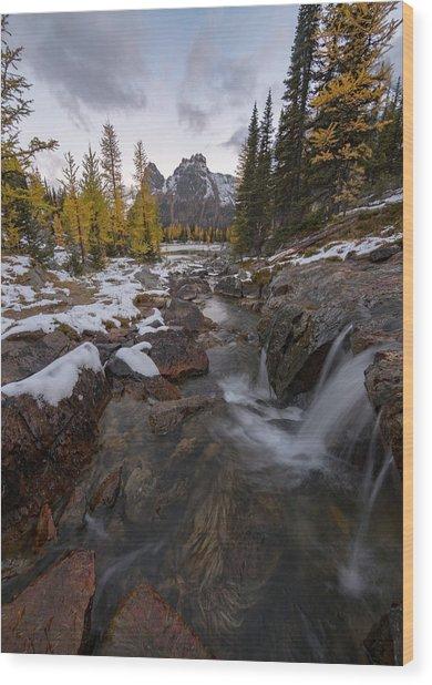 Cascading Wood Print