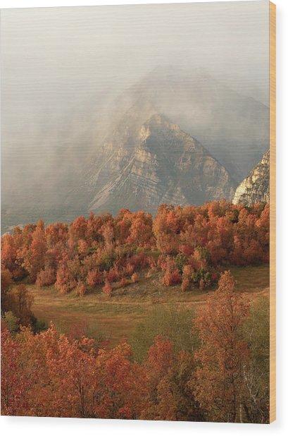 Cascading Fall Wood Print