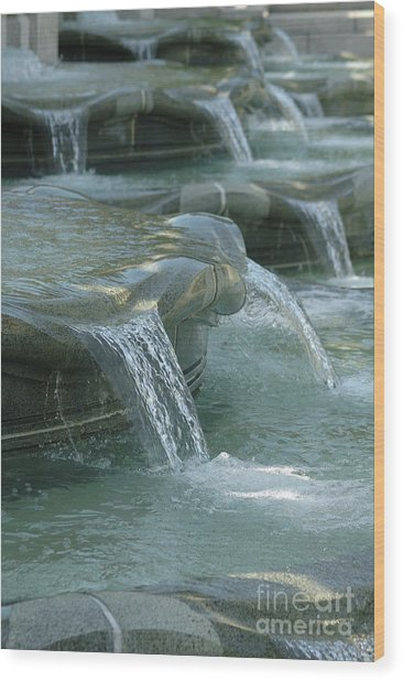 Cascading Fountain Wood Print