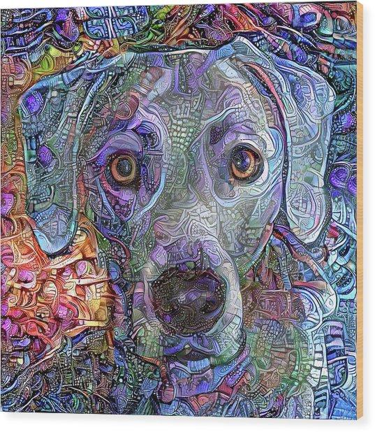 Cash The Blue Lacy Dog Closeup Wood Print