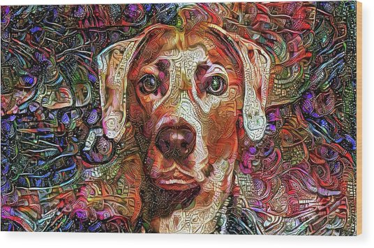 Cash The Lacy Dog Wood Print