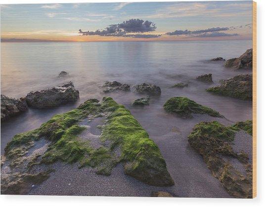 Caspersen Beach Sunset Wood Print