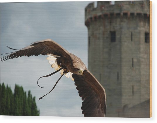 Castle And Eagle Wood Print by Irum Iftikhar