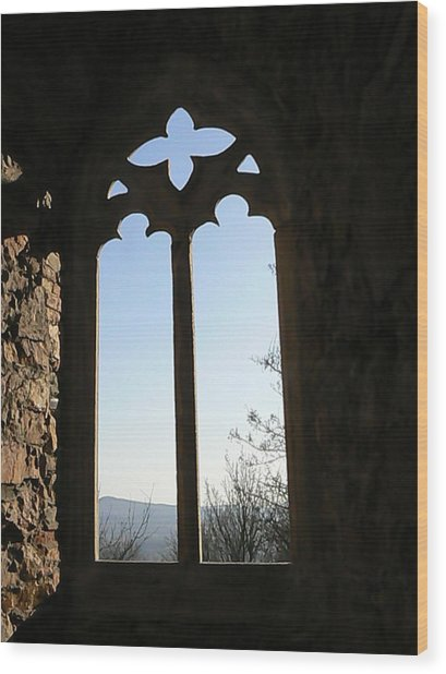 Castle  Another Window Wood Print by Ron Hayes