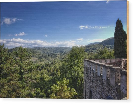Castle In Chianti, Italy Wood Print