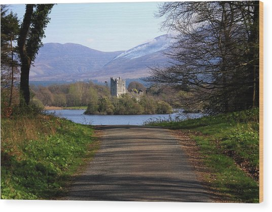 Castle On The Lakes Wood Print