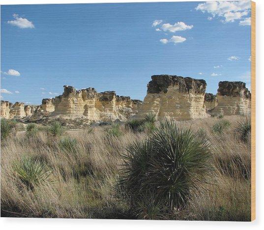 Castle Rock Badlands Wood Print
