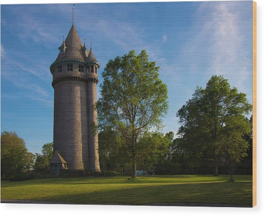 Castle Turret On The Green Wood Print