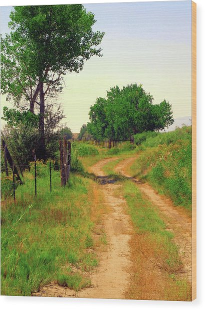 Castledale Farm Road Wood Print