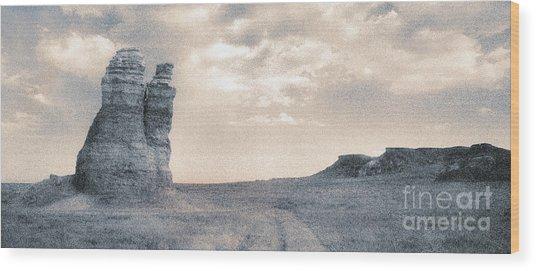 Castles Of Wonder Wood Print