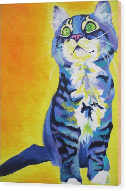 Cat - Here Kitty Kitty Wood Print