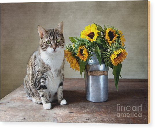 Cat And Sunflowers Wood Print