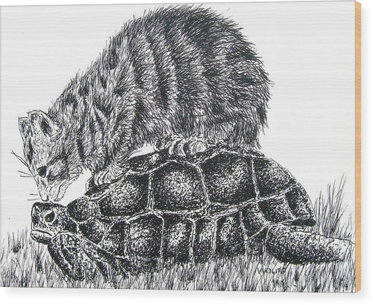Cat And Turtle Wood Print