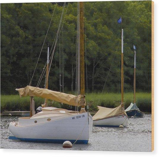 Cat Boats Wood Print