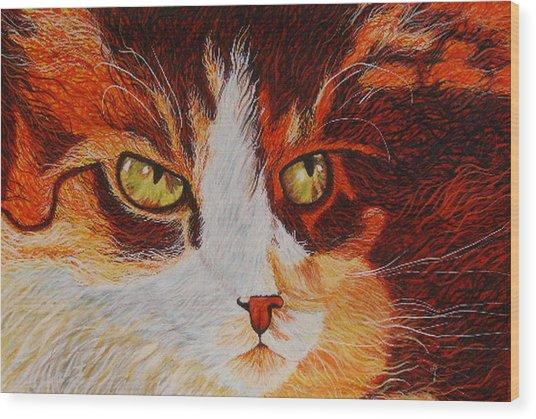 Cat Eye Wood Print by Shahid Muqaddim