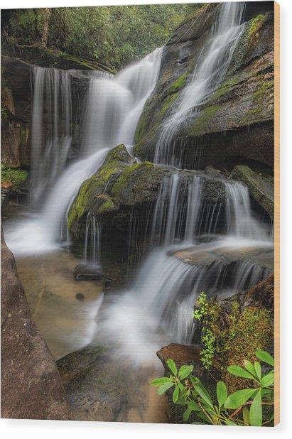 Cat Gap Loop Trail Waterfall Wood Print