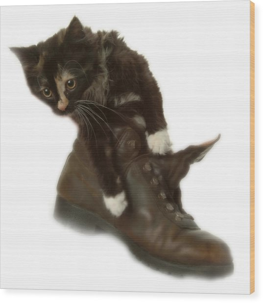 Cat In Boot Wood Print
