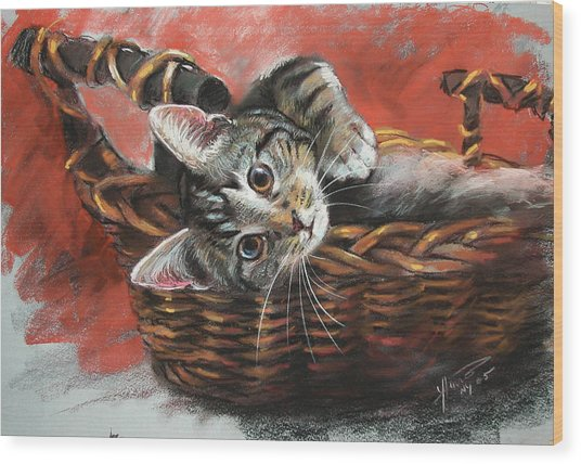 Cat In The Basket Wood Print
