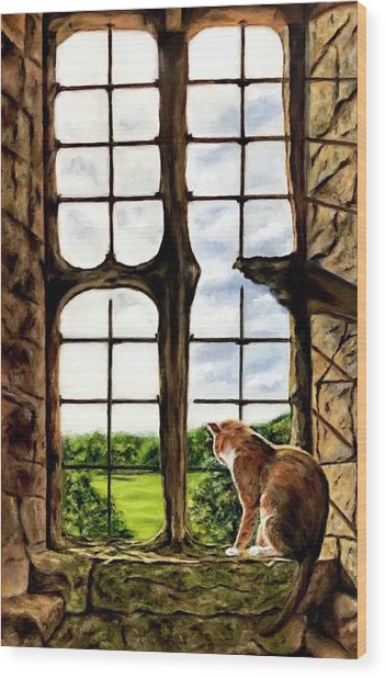 Cat In The Castle Window-close Up Wood Print