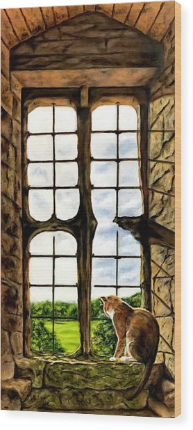 Cat In The Castle Window Wood Print