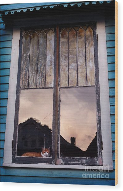 Cat In The Window Wood Print