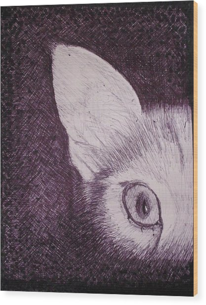 Cat Lurking Wood Print by SAIGON De Manila