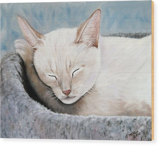 Cat Nap Wood Print by Merle Blair