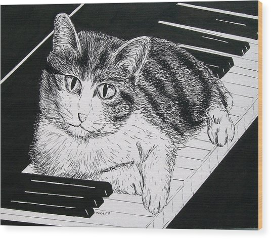 Cat On Piano Wood Print