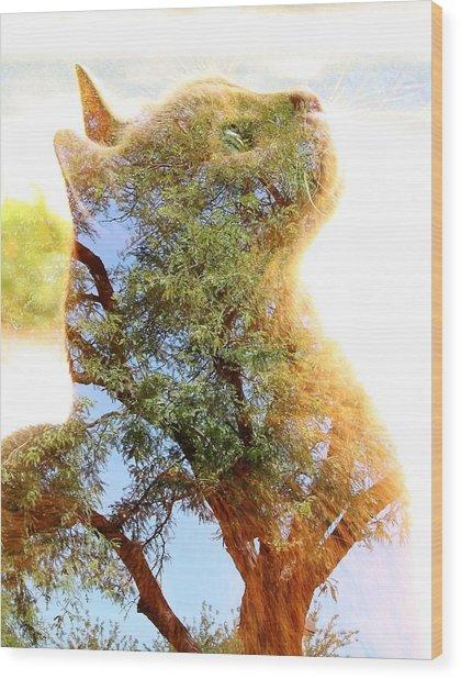 Cat Or Tree Wood Print