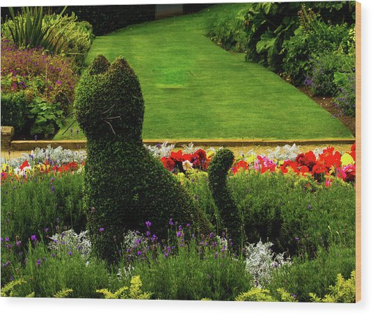 Cat Topiary Belfast Wood Print