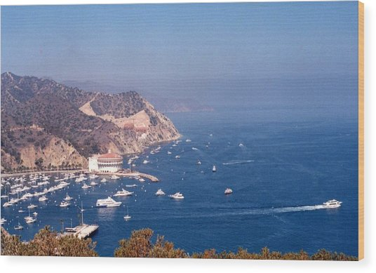 Catalina Calif............ Wood Print
