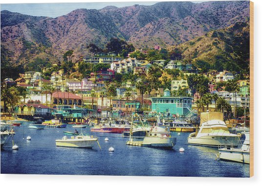 Catalina Express  View Wood Print