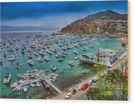 Catalina Island  Avalon Harbor Wood Print