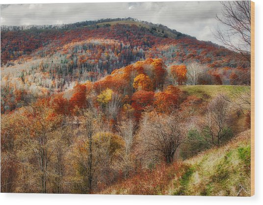 Cataloochee Fall Wood Print