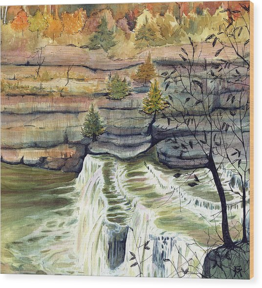 Cataract Falls Wood Print