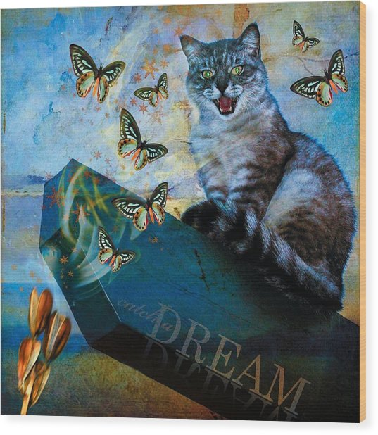 Catch A Dream Wood Print