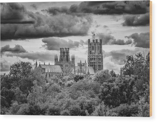 Cathedral From The North-east Wood Print