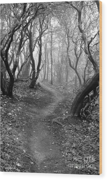 Cathedral Hills Serenity In Black And White Wood Print