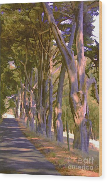 Cathedral Of Trees Wood Print