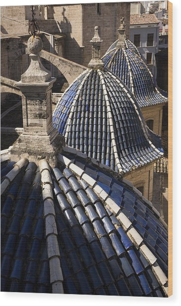 Cathedral Valencia Side Domes Wood Print