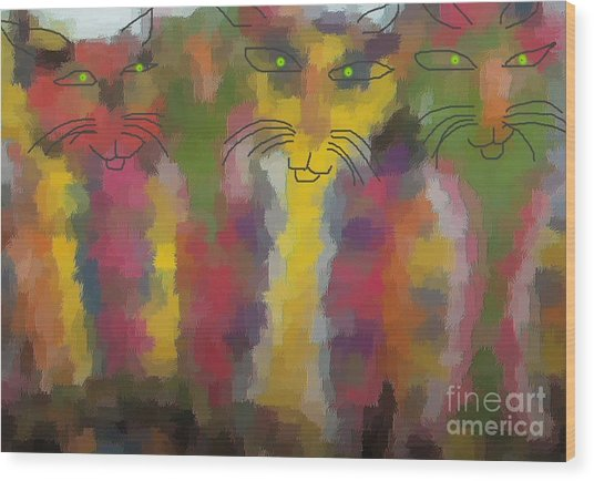 Cats Wood Print by Don Phillips