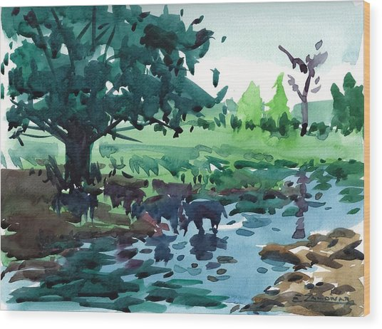 Cattle In The River Wood Print