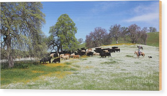 Cattle N Flowers Wood Print