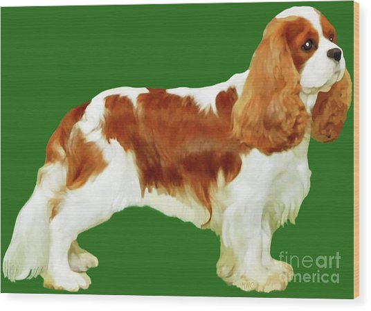 Cavalier King Charles Spaniel Wood Print